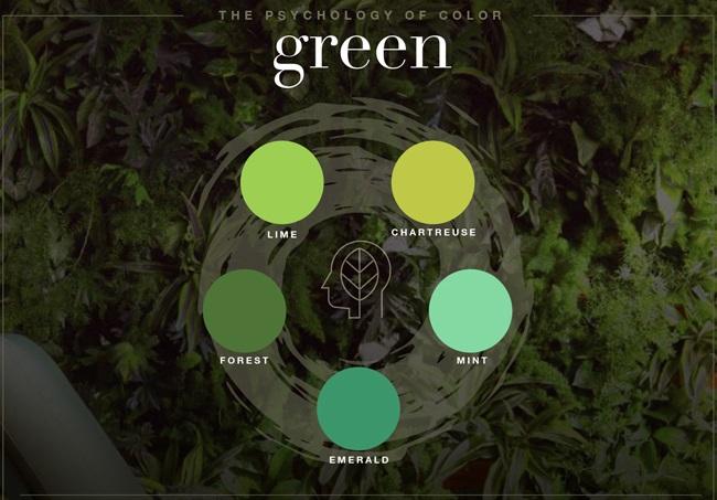 معنی رنگ سبز در طراحی لوگو