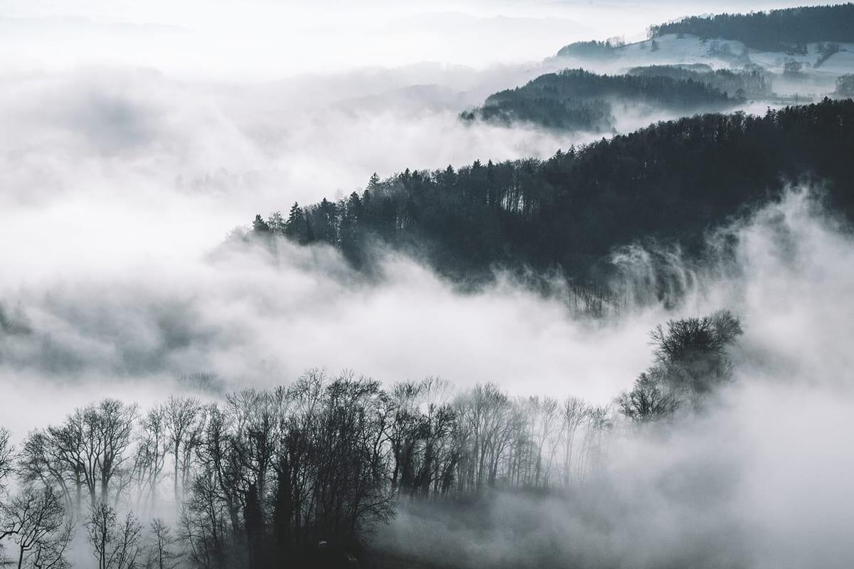 چگونه عکس های مهیج از مه را ثبت کنیم