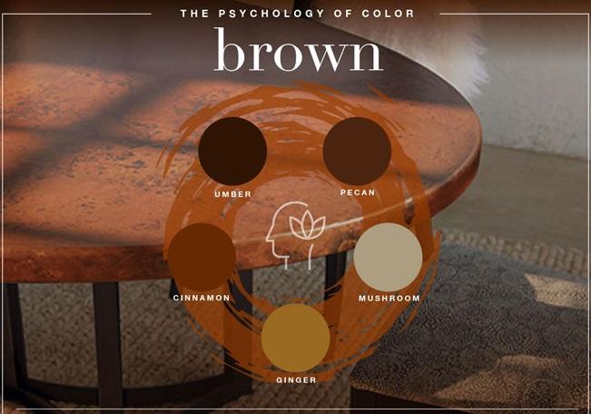 معنی رنگ قهوه ای در طراحی لوگو